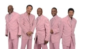 Members of the band The Spinners