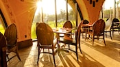 Sunlight washes through the window at Sanaa as 2 zebra roam the savanna outside