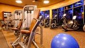 Uma linha de oito equipamentos de levantamento de peso em frente a uma fileira de bicicletas ergométricas
