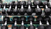 Close-up of free weights on two racks