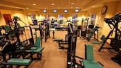 The health club at Disney's Grand Floridian includes a room filled with treadmills, circuit weights, TV monitors and more