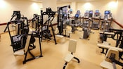Running, cycling and weight-lifting equipment in a health club