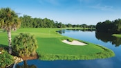 Palm trees, shimmering waters and lush greenery surround a hole at Disney's Palm Golf Course