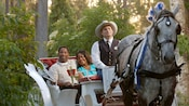 A couple smiles together while a Disney Cast Member guides their horse-drawn carriage ride at sunset