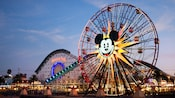 Two popular Paradise Pier attractions: Mickey's Fun Wheel and California Screamin