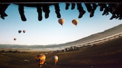 While Soarin' Over California, feel like you're floating as high as hot air balloons
