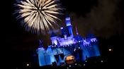 Sleeping Beauty Castle and a spectacular streak of fireworks