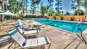 Tall trees surround the rectangular pool, where chaise lounges await guests