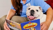 Best Friends Pet Care staffer reading Disney's 101 Dalmatians to a bulldog
