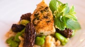 Close-up of a fish filet with morels, lima beans and pasta