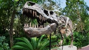 Skeleton statue of a T-Rex named Dino-Sue on the attack