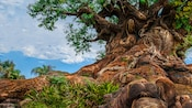 The roots and trunk to the Tree of Life made up of carved animals