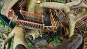 A look down at the lower levels of Swiss Family Treehouse in Adventureland
