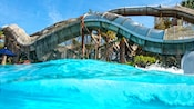 2 Guests riding inner tubes down waterslides at Crush 'n' Gusher at Disney's Typhoon Lagoon Water Park