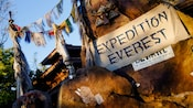A banner for Expedition Everest on a stone wall next to Himalayan flags hanging from ropes