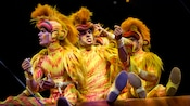 Three performers in orange monkey outfits sit in a row and groom one another