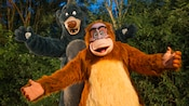 Baloo and King Louie from Walt Disney's The Jungle Book happily awaiting Guests with their arms open