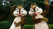 Chip 'n Dale strike a happy pose in the garden at Meet More Disney Pals near Epcot Character Spot