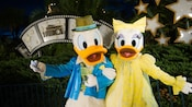Donald and Daisy Duck at Meet Disney Pals at Sorcerer's Hat in Disney's Hollywood Studios