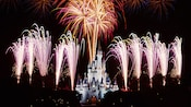 Fireworks burst into the night sky above Cinderella Castle