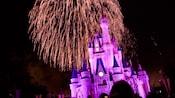 Cinderella Castle lit up in a purple glow beneath a sky lit up by fireworks