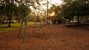 Swing sets on a playground at The Cabins at Disney's Fort Wilderness Resort