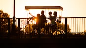 A family enjoying a sunset ride on a surrey bike