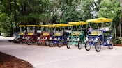 6 surrey bikes lined up on a path ready for rental at Disney's Wilderness Lodge