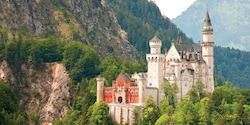 Neuschwanstein Castle stands amongst trees on a mountainside