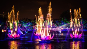 The music-filled water and light show 'Rivers of Light' taking place at Disney's Animal Kingdom park