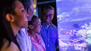 A man and his wife laughing together while gazing upon underwater habitats in Future World at Epcot