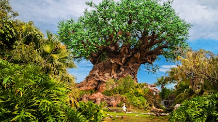 A majestosa Tree of Life, em meio à vegetação exuberante, no centro do Disney's Animal Kingdom Theme Park