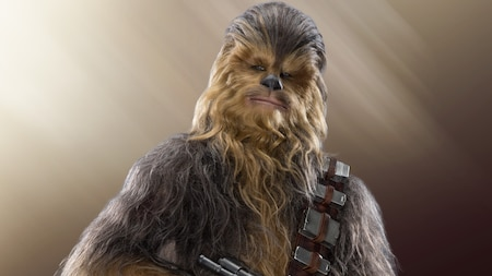 A three quarter photo of Chewbacca with a section of his cartridge laden bandolier and the tip of his bowcaster visible