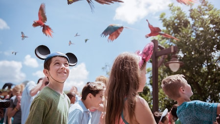 A group of children and adults look at parrots in the sky