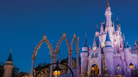 Magic Kingdom Theme Park Walt Disney World Resort - The 12 best disneyland attractions for your little princess