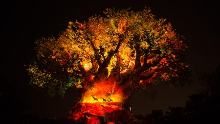 The iconic Tree of Life at Disney's Animal Kingdom park at night
