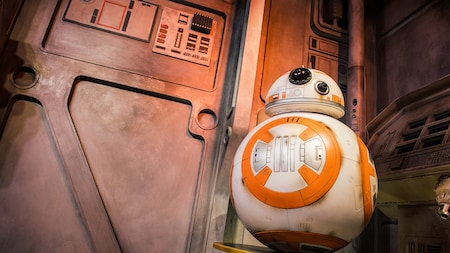 BB-8 awaits Guests during a Character Encounter experience at Disney's Hollywood Studios