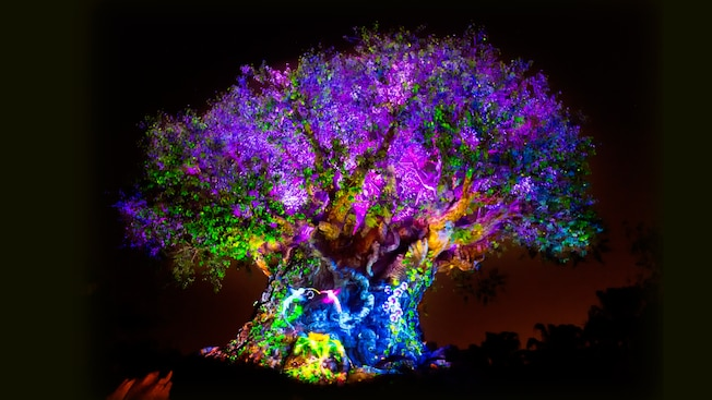 Image result for tree of life awakenings