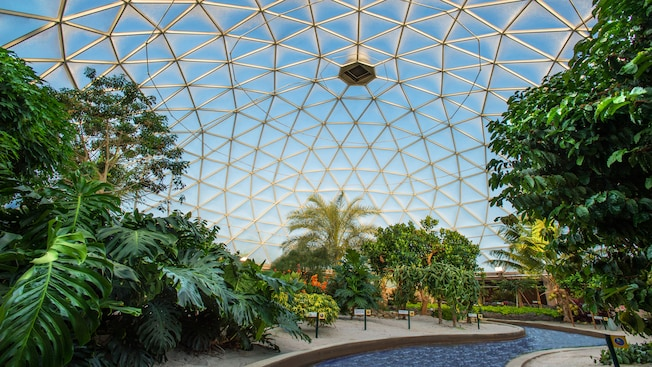The Tropics Greenhouse, un laboratorio viviente y una parte de la atracción Living with the Land