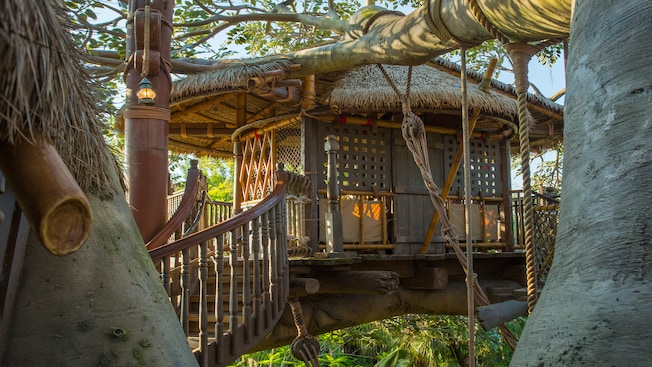 Swiss Family Treehouse supported by tree limbs at Adventureland in Magic Kingdom park