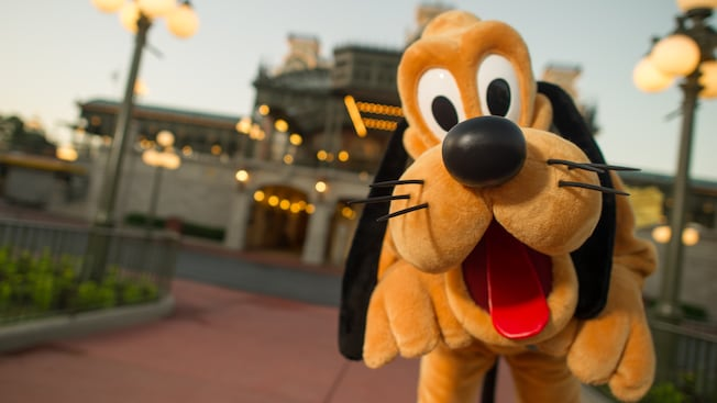 Un Pluto saltarín en Town Square en Main Street, U.S.A. en el parque temático Magic Kingdom