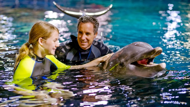 Man and girl in wetsuits petting a bottlenose dolphin in a pool