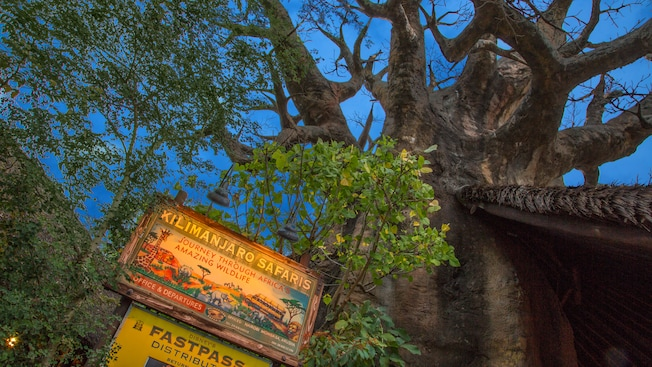 A sign, styled like a twentieth century travel advertisement, identifies the Kilimanjaro Safaris
