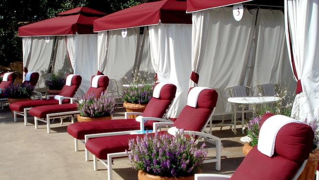 Sillas de lounge acolchonadas con toallas y macetas con flores silvestres arriba en línea hacia un trío de cabañas