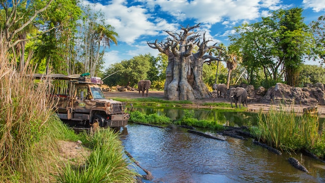 An open-air safari bus drives in a river past 3 elephants