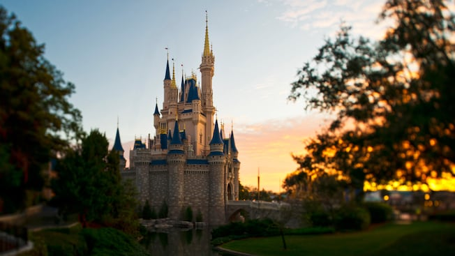 View of Cinderella Castle with a rose garden in the foreground