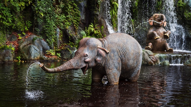 Two elephants in a river—one standing, one sitting—squirt water at the Jungle Cruise attraction