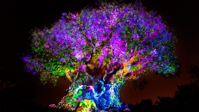 Tree Of Life скачать игру бесплатно - фото 11