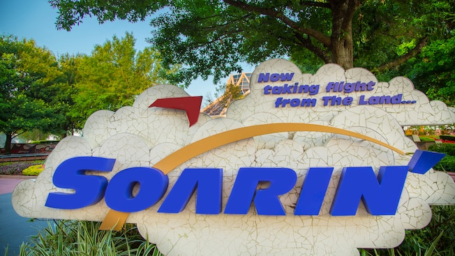 An outdoor Soarin' sign with the phrase,