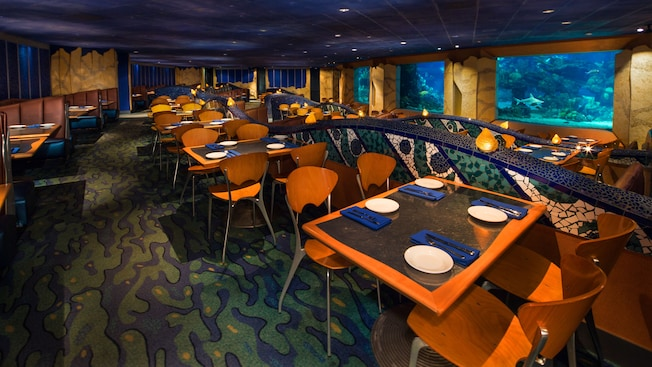 Image result for coral reef restaurant